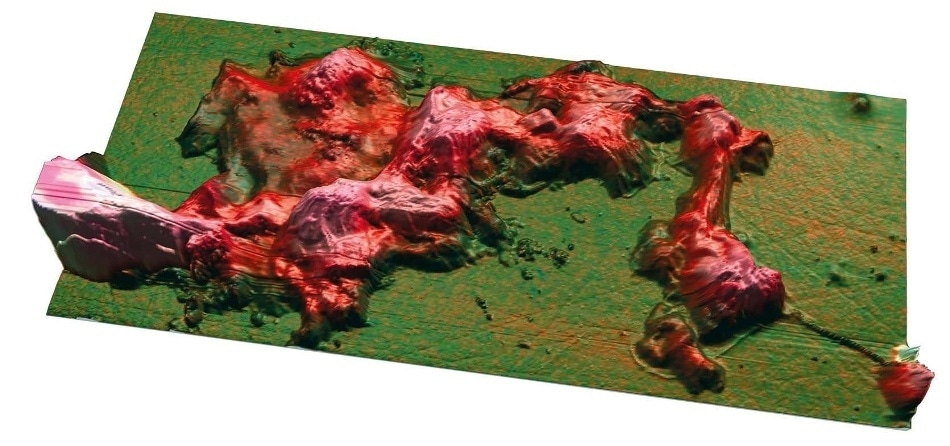 Co-localization (overlay) of AFM topography and nanoscale infrared (IR) image of degraded collagen using MountainsMap®.