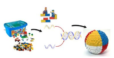 "A concept of programmable self-assembly. Nano-components of various types (lego-blocks) are directed by ""smart"" glue, biomolecules (for example, DNA), that encode how components interact, that leads to formation of final structure."