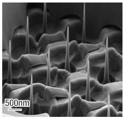 Nano-Pillar arrays