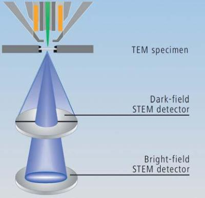 The unique arrangement of both brightfield (BF) and darkfield (DF) diodes in the ZEISS Multi-Mode STEM detector. BF and DF electrons can be collected simultaneously and processed together. BF inverted DF is a typical configuration for large fields of view in excess of 100 microns with even illumination.