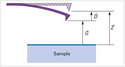 Deflection of a cantilever caused by tip-sample forces