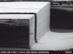 SEM Image of 20 μm hot embossed micro fluidic channels utilizing polymeric stamps (height 180 μm). Source: IMI-CNRC.