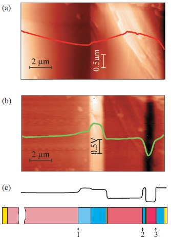 KPFM study of the cleaved surface of an MJ SC in the dark. During measurements both contacts to the MJ SC were grounded. (a) Topographic image of the cleaved surface profile, measured in semi-contactmode (the color-scale contrast spans the height variations of 0.85 μm). (b) Map of the CPD signal measured in the second pass in the absence of an external photoexcitation (the color-scale contrast spans the CPD variations of 1.05 V). (c) Smoothed equilibrium profile of the built-in potential (from model). Schematic of the layers: arrows with digits show the p-n junction positions in the subcells (see also color designations in Fig. 1). Measurement parameters: AFM laser with a wavelength of 650 nm used in the system for cantilever deflection detection, noncontact VIT_P probe, resonance at 257 kHz, surface potential signal was measured at 100 nm lift height and uac=