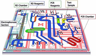 lab on a chip pdf