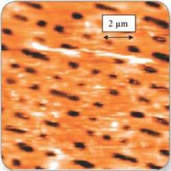 High-resolution NanoLens AFM image data of area of interest.