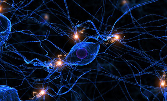 artificial neural networks in real life Our dilemma: do we adjust the neural networks we're creating to make them more fair in an unfair world, or address bias and prejudice in real life.