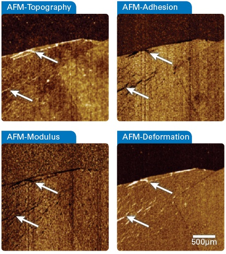 Simultaneously recorded quantitative nanomechanical AFM data of a single and double layer of the graphene flake. The wrinkles marked by arrows visible in the topography (top left) are strongly reflected in the mechanical property channels as being softer (bottom left) with less adhesion (top right) than the surrounding material. The deformation channel (bottom right) points to a strong plastic deformation of the graphene layers as they do not relax during the sub-millisecond contact time with the AFM probe.