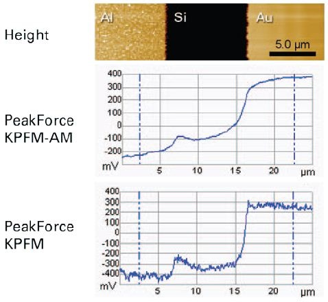 Height (top) and potential profiles using PeakForce KPFM-AM (middle) and PeakForce KPFM (bottom) on the Bruker KPFM standard sample, on the same location and with the same tip (PFQNE-AL).