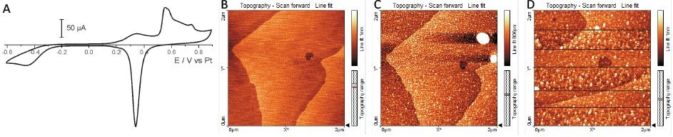 Au(111) in 0.1M H2SO4. (A) Cyclic voltammogram of the bead crystal as attached to the gold sheet in 0.1M H2SO4. AFM images: (B) atomically-flatter races,