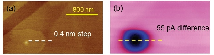 PeakForce SECM images of an HOPG sample: (a) topography; (b) electrochemistry (adapted from Nellist et al., Nanotechnology, 2017, 28(9), 095711, IOP Publishing30).