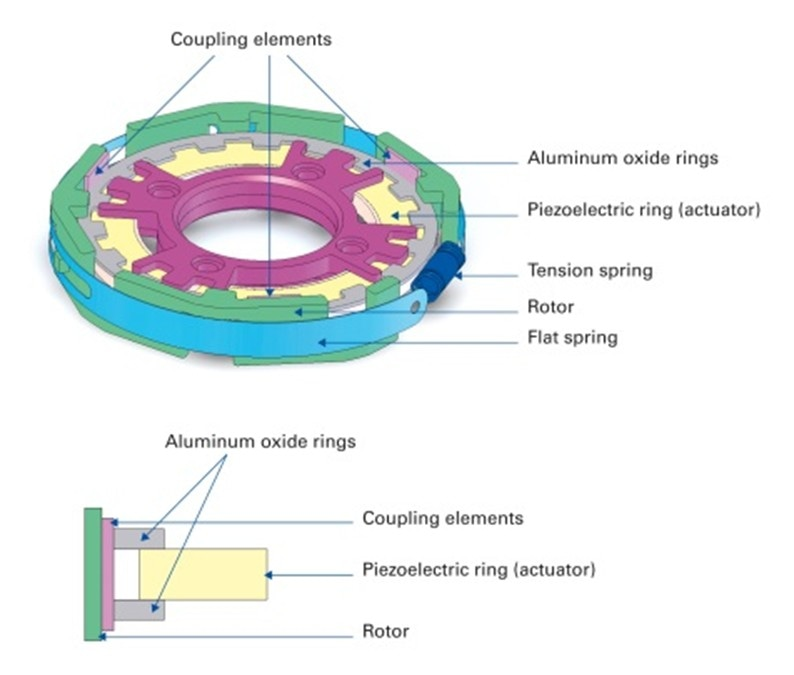 A compact piezoelectric ultrasonic rotary motor for variable drug delivery. The motor consists of a piezoelectric ring actuator excited with a traveling wave. Thin aluminum oxide rings (grey) on top and bottom of the piezo ring absorb the oscillations. With the help of the three coupling elements (pink) used in the rotor, the absorbed oscillations are transmitted to the pre-loaded rotor (green) and converted to a rotary motion. (Image: PI)