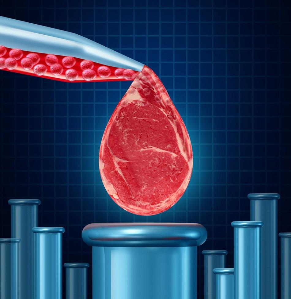 tissue engineering regenerative medicine pdf