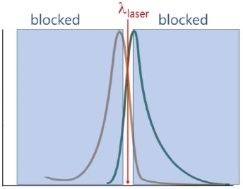 Fluorescence-blocking filters transmit only a narrow band of wavelengths centered on the laser wavelengthλexc.