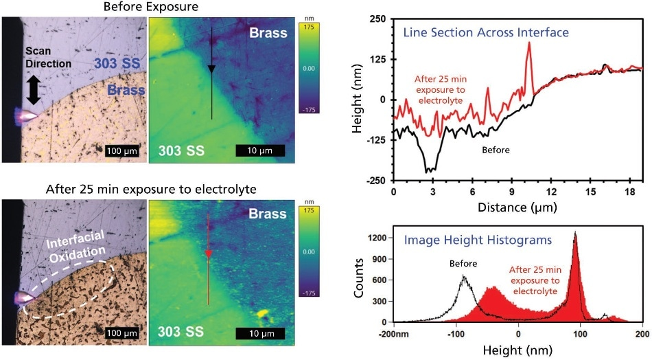 Optical and AFM images of brass in 303 SS