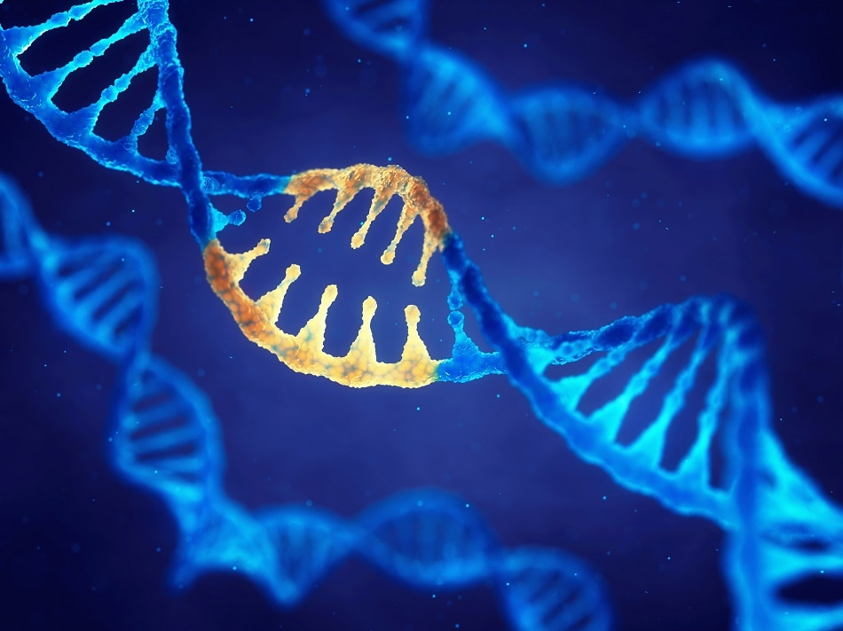Nanotechnology and Biotechnology - Similarities and Differences