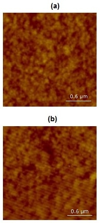 AFM image of a platinum thin film taken using a probe with an (a) coated and (b) uncoated cantilever.
