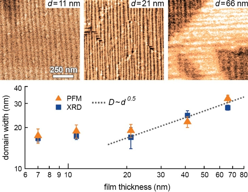 Strain effects in ferroelectric NaNbO3 (NNO) films grown on TbScO3 (TSO) substrates with metal organic chemical vapour deposition (MOCVD). Growth of epitaxial NNO on TSO results in significant anisotropic misfit strain. Understanding relations between strain, crystal structure, and ferroelectric response will enable finetuning of film properties. The lateral piezoresponse force microscopy (PFM) image on a film with thickness d=
