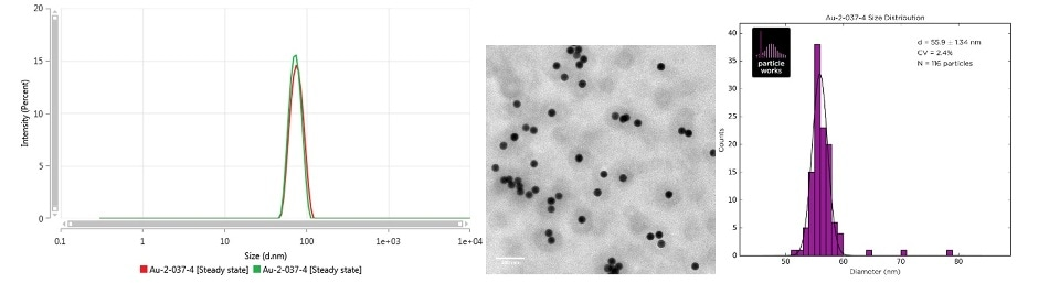 Intensity size distribution as measured by MADLS (left), TEM image (center) and the TEM size distribution (right) of Au-2-037-4