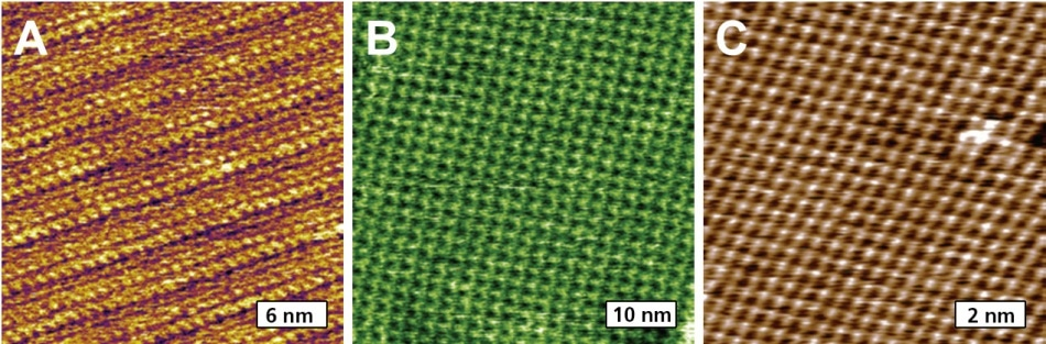 AFM imaging of 2D molecular lattices from previous studies. (A) Phase image of a pure EMIm+ TFSI– Stern layer adsorbed to a HOPG substrate; 30 nm scan, imaged in the bulk EMIm+ TFSI– ionic liquid (as seen in Ref. [iv]). (B) Height image of the square lattice of TCPP assembled on hBN substrate; 50 nm scan, imaged in air (as seen in Ref. [v]). (C) Height image of the lattice of C8-BTBT grown on hBN substrate; 10 nm scan, imaged in air (as seen in Ref. [vi]).