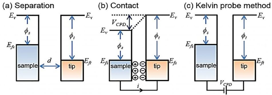 Electronic energy levels of the sample and AFM tip for three cases: (a) tip and sample are separated by distance d with no electrical contact, (b) tip and sample are in electrical contact, and (c) external bias (VDC) is applied between tip and sample to nullify the CPD and, therefore, the tip–sample electrical force. Ev is the vacuum energy level. Efs and Eft are Fermi energy levels of the sample and tip, respectively.