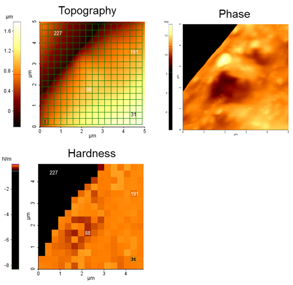 Force-volume mapping array of the sample's interfacial region and the hardness map generated from it. The hardness data correlates to the phase image of the same interfacial region.