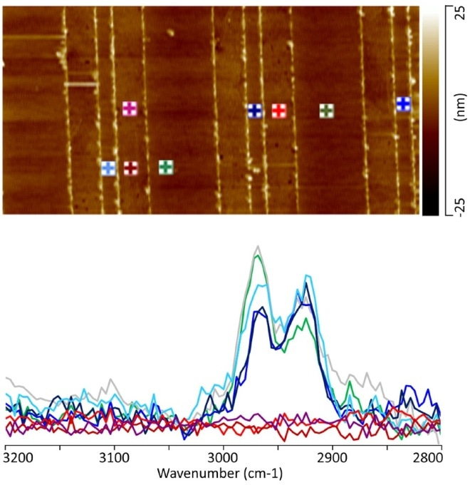 (a) 10 μm X 5 μm AFM topography image illustrating the regions from which the AFM-IR spectra were collected. Note the color of the marker corresponds to the color of the individual spectra. (b) AFM-IR C-H stretch spectra from the patterned α-SiOC:H/Cu interconnect.