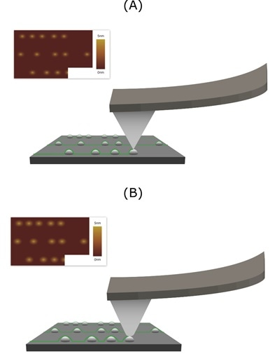 Effects of the Aspect Ratio and Tip Sharpness of an AFM Probe