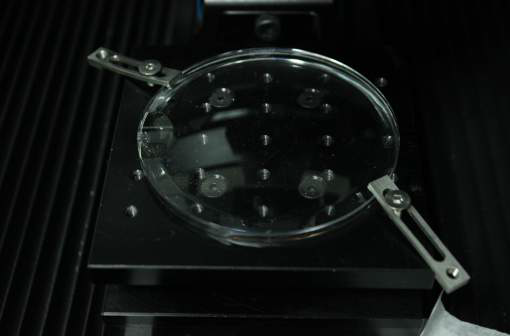 Example of polycarbonate lens about to be tested on Nanovea Mechanical Tester