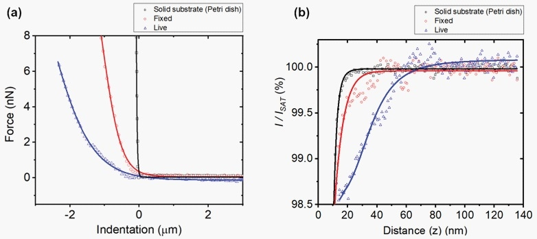 Average force-distance curves (a) and ion-current-distance curves (b) of the solid substrate (black), 4% PFA treated (fixed) cell (red), and live cell (blue).