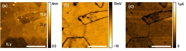 (a) Topography, (b) Friction, and (c) current obtained at the same time on an 1-2 layer as-grown MoS2/sapphire sample. The layer thickness of each region is shown in (a). Scale bar is 200 nm.