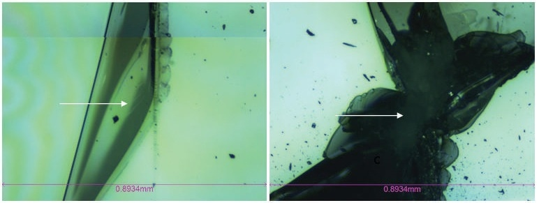 Optical microscope image of Critical Load #1 location (left) and Critical Load #2 location (right) - Tempered Glass Screen Protector Image was taken with 5x magnfication (image width: 0.8934 mm).
