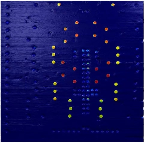 Several of the transistor contacts show a clear electric conductivity in the C-AFM image in contact mode, but at varying levels (yellow-red). Others, particularly in the central structure, only show very low conductivity (light blue), while most contacts on the outside of the image show no conductivity at all (dark blue). Contacts with similar conductivity are clustered together in groups and show an overall symmetrical (mirrored) arrangement.