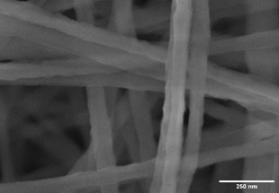 SEM image of uncoated PvDF electrospinning fibers, poor contrast and charging effect is visible.