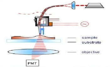 Scanning Near-Field Microscopy (SNOM) - Principles and Modes of Operation by NT-MDT