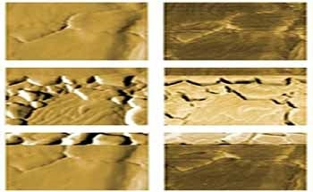 Bulk Copper Deposition on Gold Studied in an EC-AFM Application Using the FlexAFM