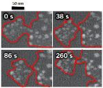 Using In-Situ TEM Electrochemistry for the Analysis of Automotive Fuel Cell Degradation
