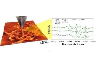 Tip-Enhanced Raman (TERS) for Characterizing Bio-Molecules at the Nanoscale