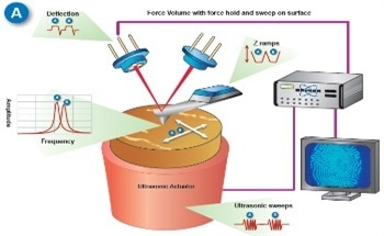 Quantitative Nanomechanical Measurement of Elastic and Viscoelastic Properties with FASTForce Volume CR