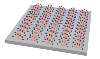 Research Possibilities in Surfactant Behavior at Solid-Liquid Interfaces Using Video-Rate AFM