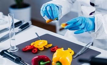 "Are ""Graphene Wearables"" the Solutions to Food Inspection?"