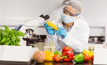 The Role of Nanotechnology in Ensuring Food Safety