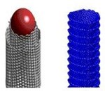 Comparative Study of Carbon Nanotubes and Carbon Nanofibers