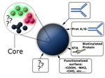 Proteomics Applications of Magnetic Silica Beads