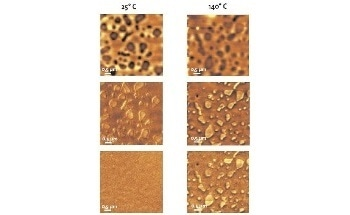 Surface Characterization Using Atomic Force Microscopy (AFM): New Solutions for Optical and Scanning Probe Microscopy