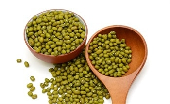 Synthesizing Silver Nanoparticles Using Mung Bean Seed Extract