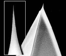 Super Sharp Silicon AFM Tips from NanoWorld