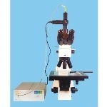Thin Film Measurement Using a User-Friendly Microscope System