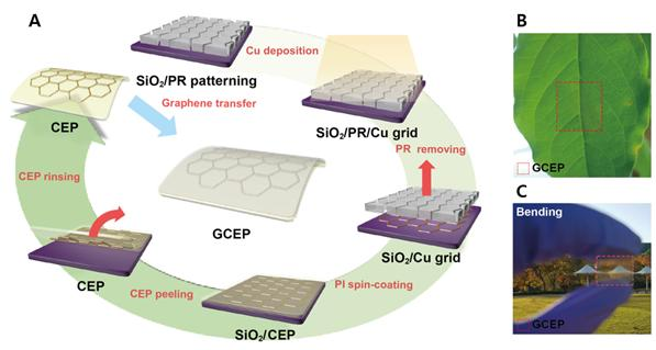 Researchers Use Graphene to Improve Performance and Stability of Solar Cells