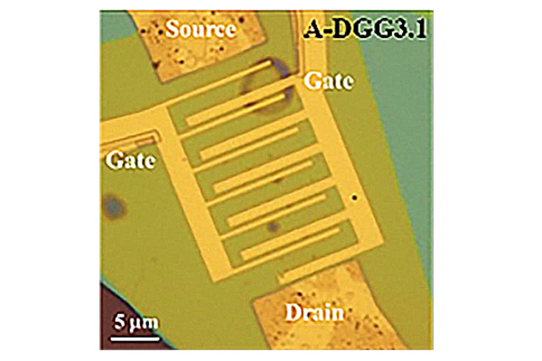 Researchers Demonstrate Ambient Coherent Amplification of THz Radiation in Graphene