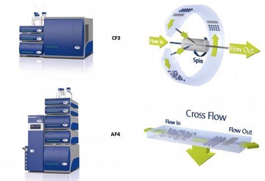 Измерение обогащения раковых биомаркеров в экзосомах